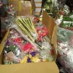 Vận chuyển hoa vải đi Mỹ, gửi hoa giả đi Mỹ